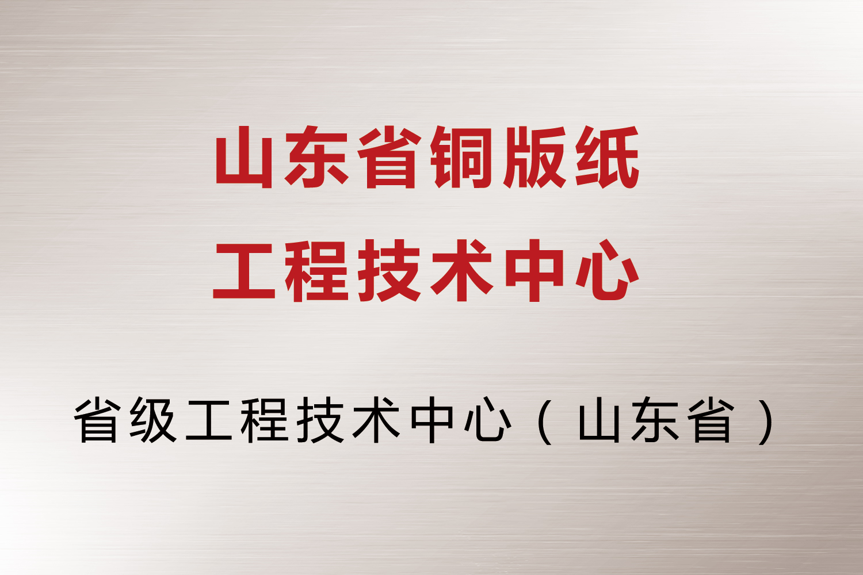 山东省铜版纸工程技术中心