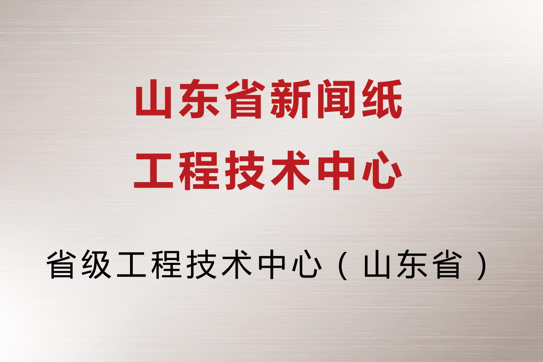 山东省新闻纸工程技术中心